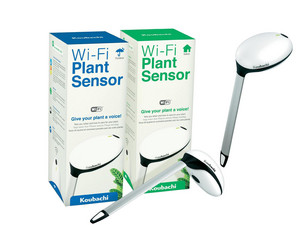 Koubachi In/Outdoor Plant Sensor